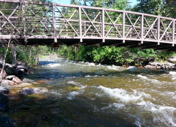 Rattlesnake Creek @ Greenough Park